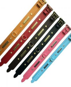 Leather Mastiff Collars