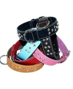 Wide Studded Leather Collars