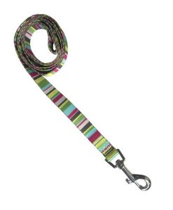 Cool Stripe Nylon Dog Lead