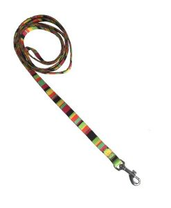 Hot Stripe Nylon Dog Lead