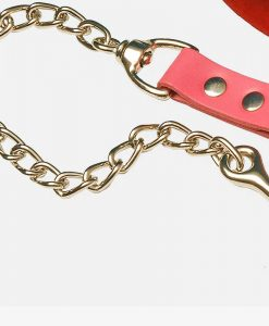 Leather Chain Leads
