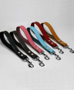 Leather Dog Leads