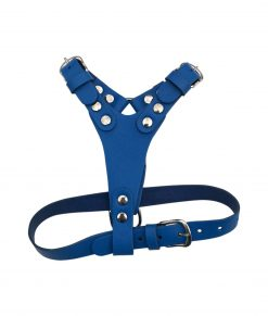 Leather Puppy Harness