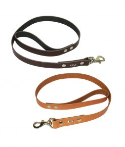 Studded Leather Leads